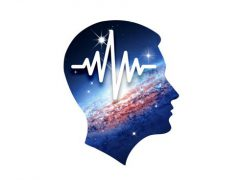 뇌파동조기 아이폰 앱 아이콘