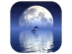 Reflection 앱아이콘