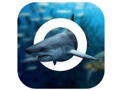 아이폰, 아이패드 Amazing World OCEAN