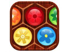 Flower Board 아이폰게임 아이콘