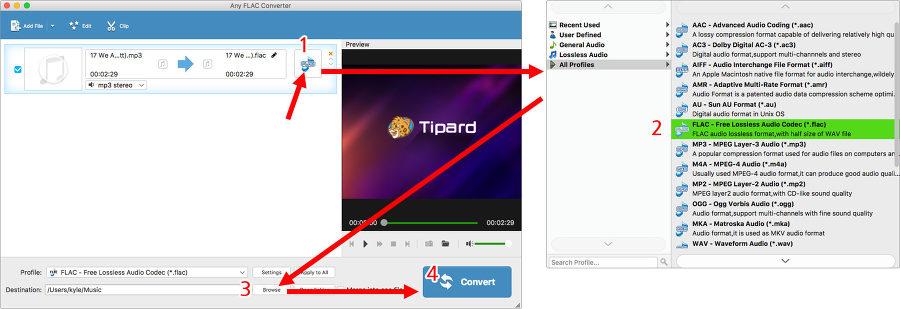 맥오디오 변환기 Any FLAC 사용법 - 개별파일 포맷 설정