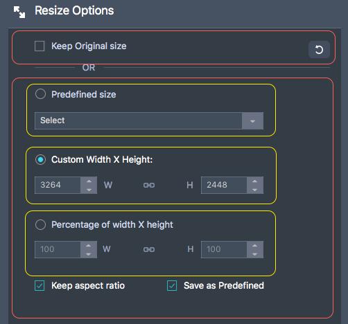 Resize Options 항목