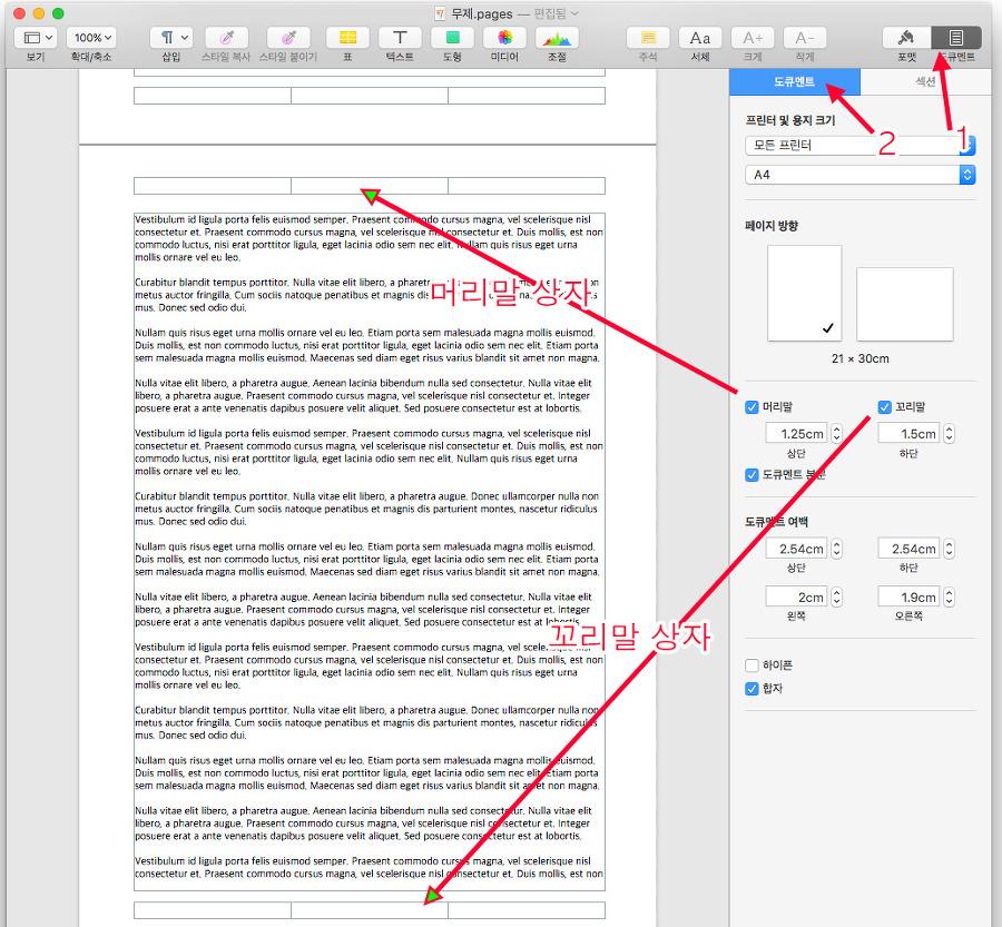 Mac Pages의 머리말과 꼬릿말 상자는 도큐멘트 설정에서 없앨 수 있습니다