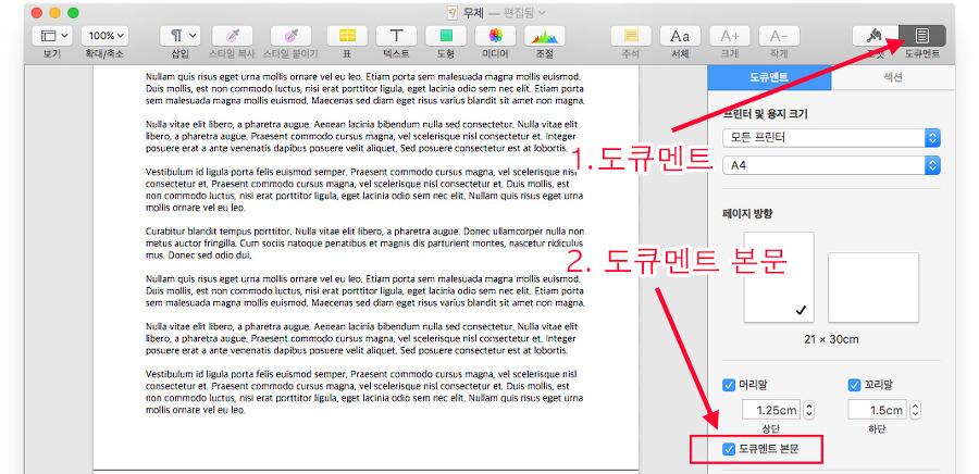 맥 Pages의 문서형태 설정 위치를 보여주고 있습니다