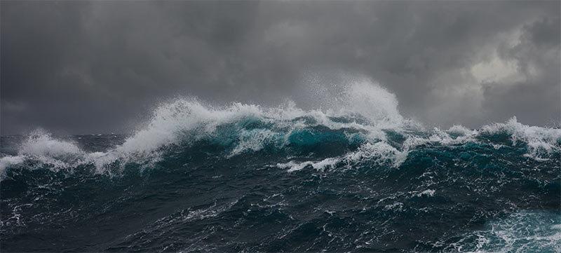 바도치는 바다